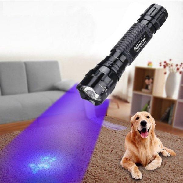 פנס LED עוצמתי עם תאורה אולטרה סגולה לבדיקת שטרות 2