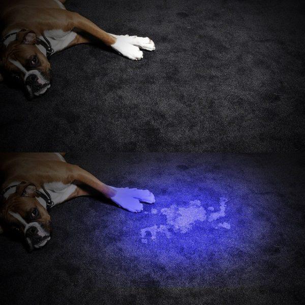 פנס LED עוצמתי עם תאורה אולטרה סגולה לבדיקת שטרות 5